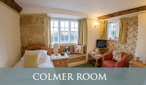 B&B in Chideock - Colmer Room