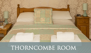 B&B in Chideock - Thorncombe Room
